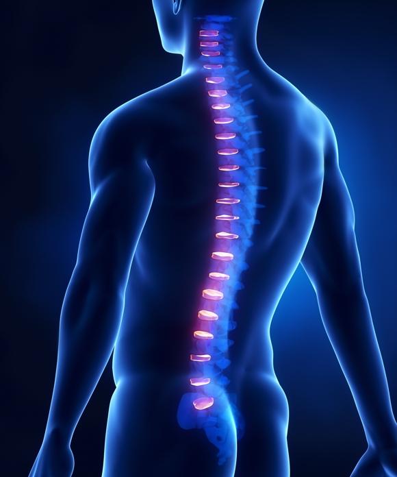 Các bệnh thường gặp liên quan đến cột sống
