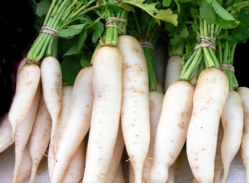 Ăn củ cải bạn đừng quên những điều này