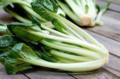 Những người tuyệt đối không nên ăn rau cải